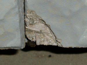 外壁の欠け落ち