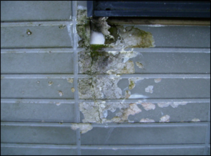凍害現象で割れた外壁