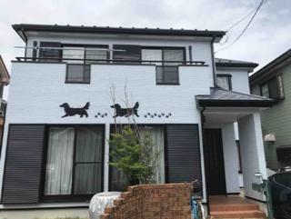 犬の外壁02