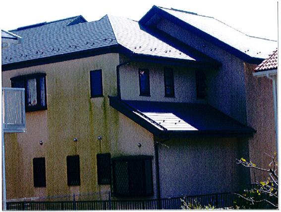 コケの繁殖した家