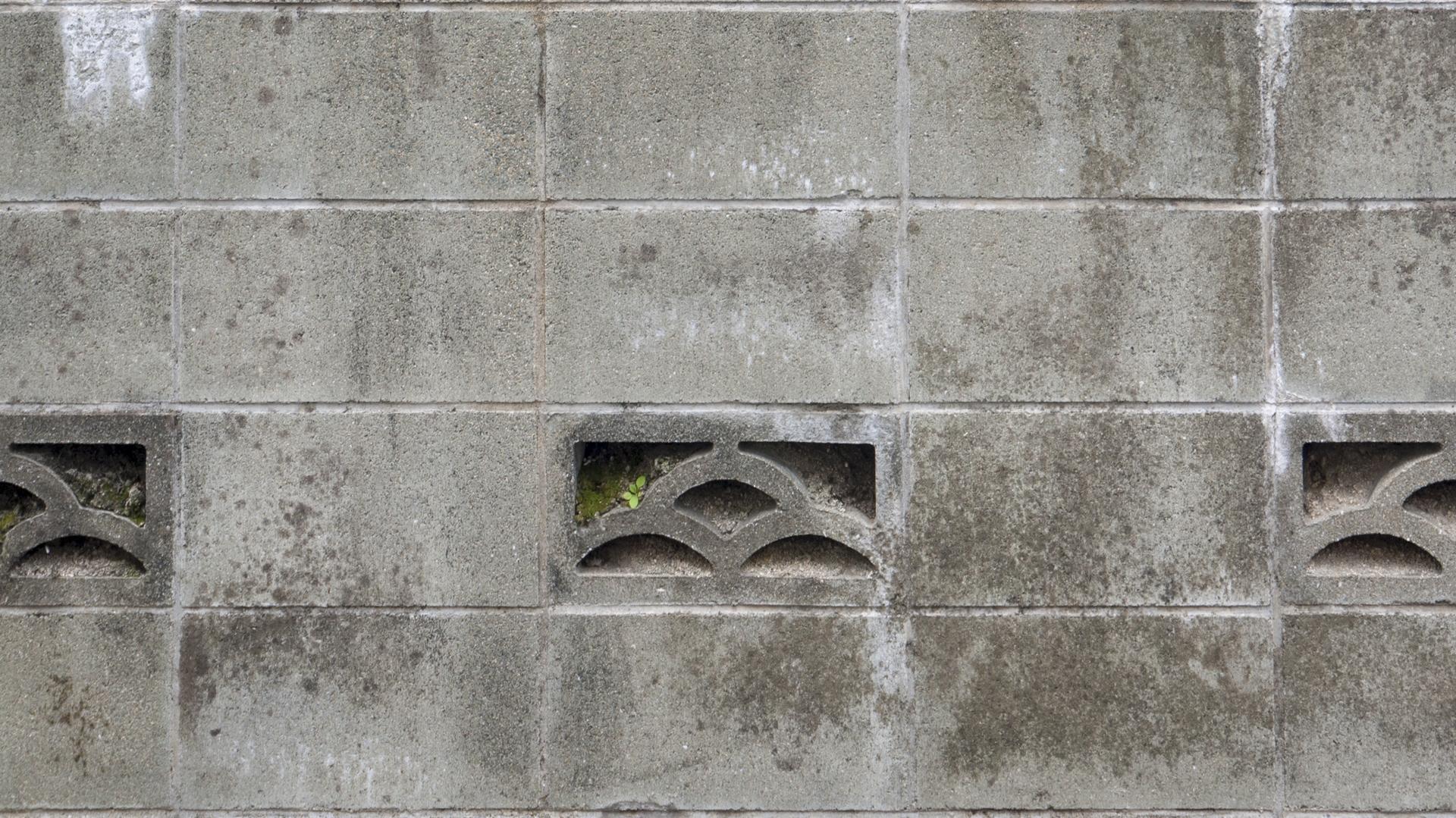 知らないと損!プロが教えるブロック塀塗装の塗料選び3つのポイント