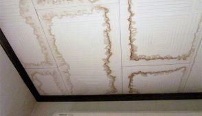 雨漏り修理DIY