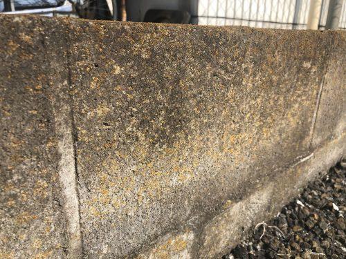 ブロック塀の汚れ:カビコケ