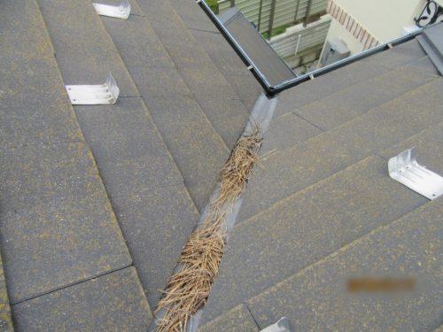 屋根板金 詰まり