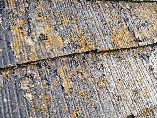 屋根 剥離