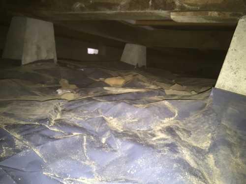 床下防湿シート