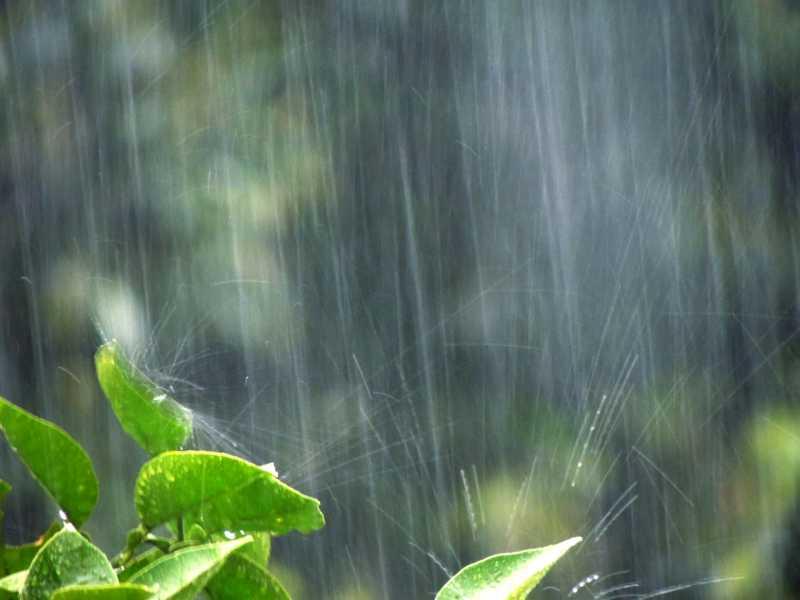 これで安心!外壁塗装中の雨への正しい対応と良い工事2つの秘訣