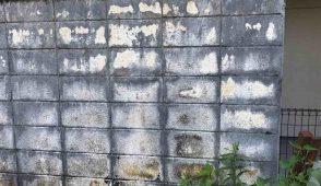 これで完璧!ブロック塀の塗装費用相場と高品質工事3つのポイント